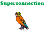Superconnectionの方